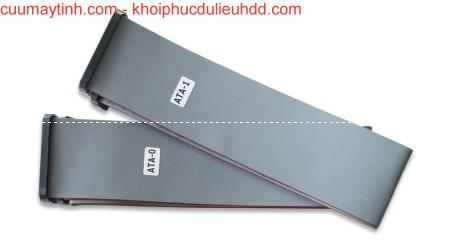 UDMA80 (80 cm) cáp phẳng