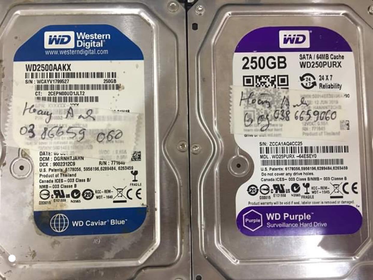Cứu dữ liệu ổ cứng Western 250GB đầu đọc kém 20/08/2019 - cuumaytinh