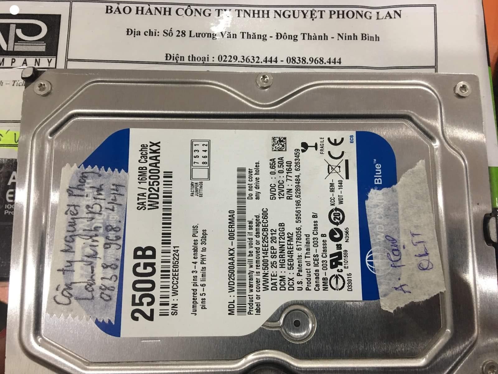 Cứu dữ liệu ổ cứng Western 250GB lỗi đầu đọc tại Ninh Bình - 06/01/2021 - cuumaytinh
